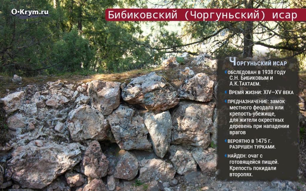 Бибиковский (Чоргуньский) исар