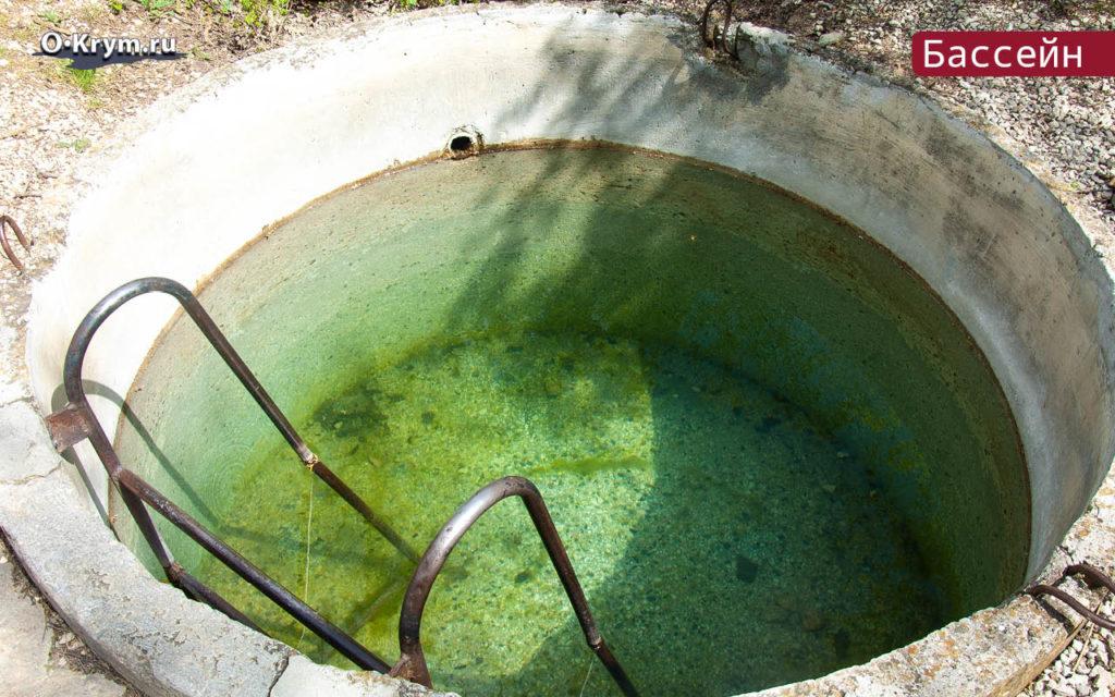 Бассейн-купель