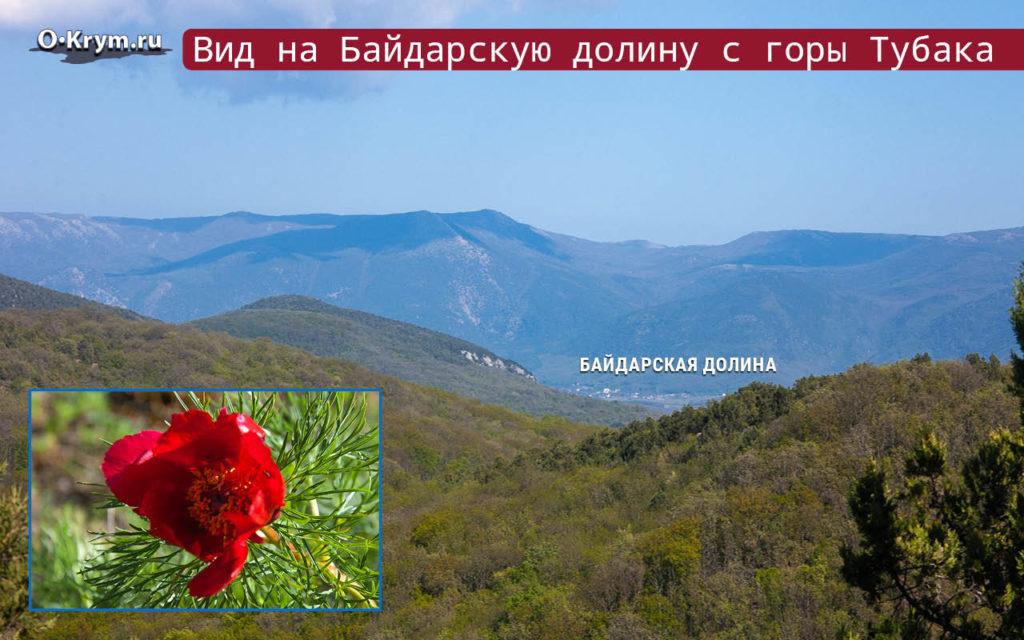 Вид на Байдарскую долину с горы Тубака