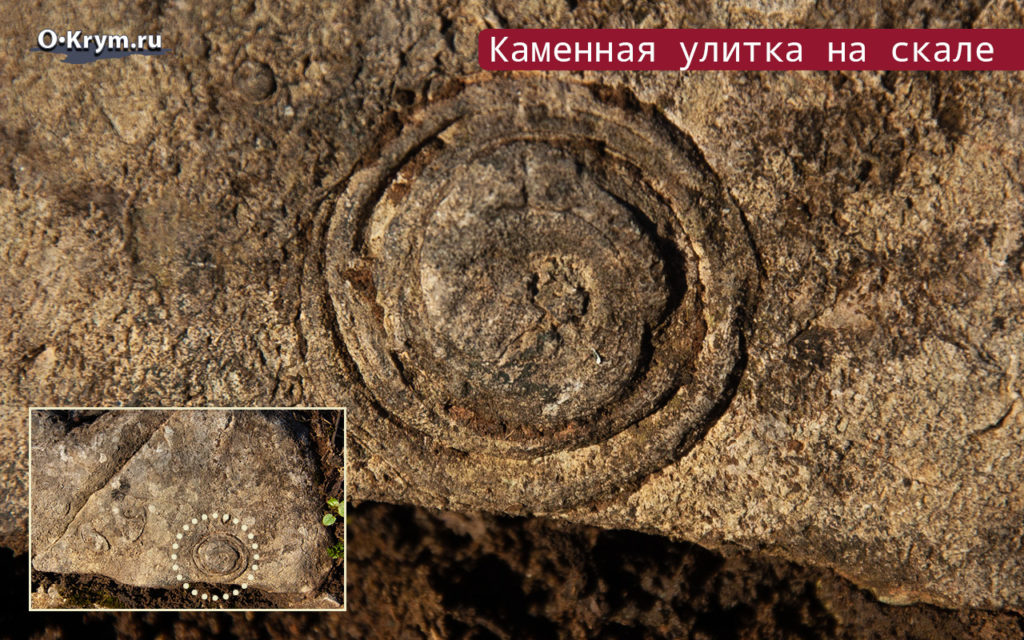 Каменная улитка на скале
