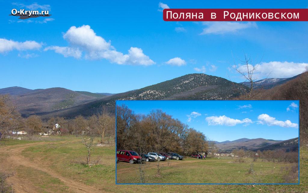 Поляна в Родниковском