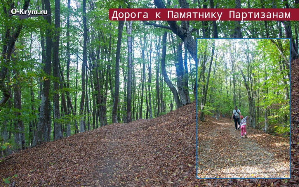 Дорога к Памятнику Партизанам