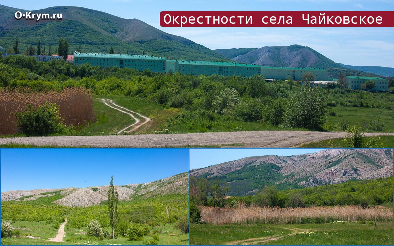 Окрестности села Чайковское