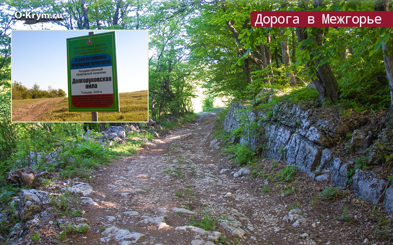 Дорога в Межгорье