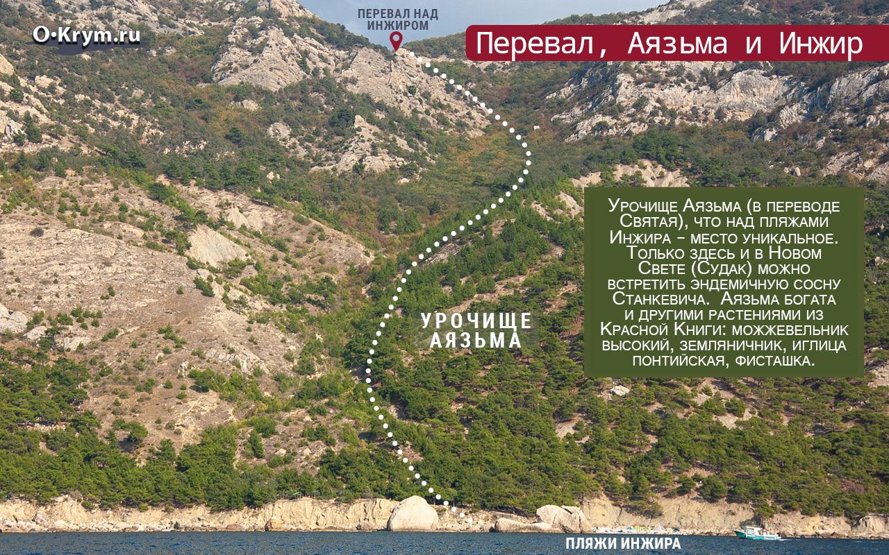 Перевал, Аязьма и Инжир