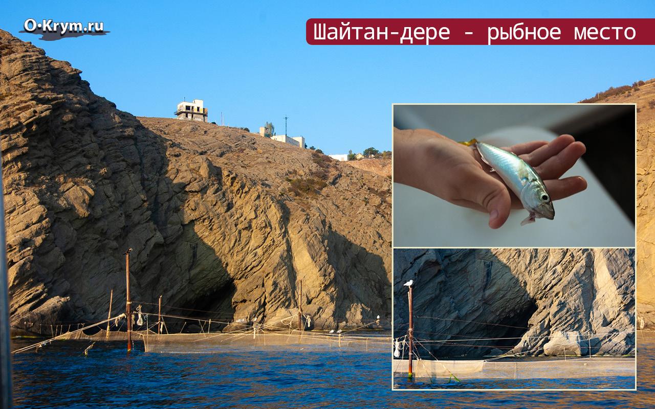 Шайтан-дере - рыбное место